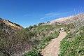 Hiking Towsley Canyon (2323961545).jpg