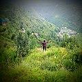 Himachal Pradesh India.jpg