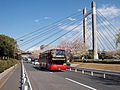 Hinomaru OP-07 Sky Bus Tokyo Fukagawa Sakura Matsuri 2014.jpg