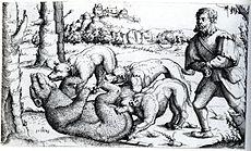 La Chasse à L'Ours dans OURS 230px-Hirschvogel_Bear_Hunt