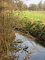 Hobson's Brook - geograph.org.uk - 1121203.jpg