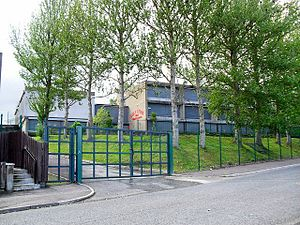 Holy Cross Girls Primary School, Ardoyne - geograph.org.uk - 1461390.jpg
