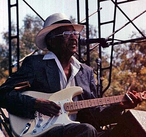 Homesick James - James at the Long Beach Blues Festival, 1994