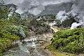 Hot springs (3526426218).jpg