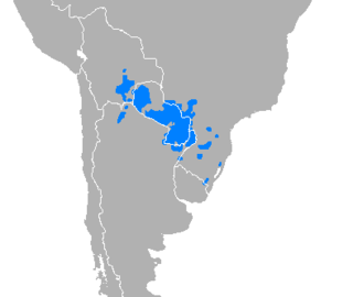 Guarani language Tupian language spoken in Paraguay, Argentina, Brazil, and Bolivia