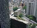 Iguana with Caracas view.jpg