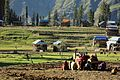 In Union with the Nature (Arang Kel, Azad Kashmir, Pakistan).jpg