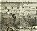 Incidents of travel in Central America, Chiapas, and Yucatan (1858) (14577375417).jpg