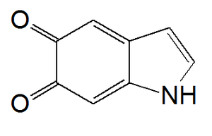Melanin - Chemical structure of indole-5,6-quinone