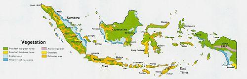 Indonesia paikallinen dating sites