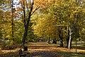 Inna alejka w parku - panoramio.jpg