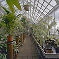 Interieur, overzicht plantenkas - Delft - 20404912 - RCE.jpg