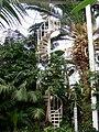 Internal, Palm House, Sefton Park (6).jpg