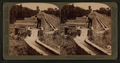 Irrigating an orange grove, Riverside, California, from Robert N. Dennis collection of stereoscopic views 3.png