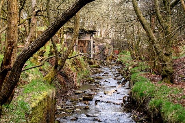 Irwell at Weir