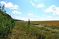 Iskitimsky District, Novosibirsk Oblast, Russia - panoramio (30).jpg