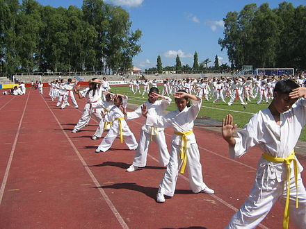 Some countries include martial arts training in school as part of Physical Education class. These Filipino children are doing karate. JJS Karate Kids.jpg