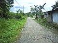 Jalan Masuk Simpang SD Pulau Pinang Utara - panoramio.jpg