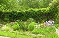 Jardin des simples et des plantes villageoises.jpg