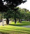 Jardins de Walter Benjamin - Daniel Navas, Neus Solé 23.jpg