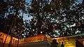 Jaya Sri Maha Bodhi - Anuradhapura 2.jpg