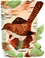 Jenny Wren-Bird Children-0088-74.png