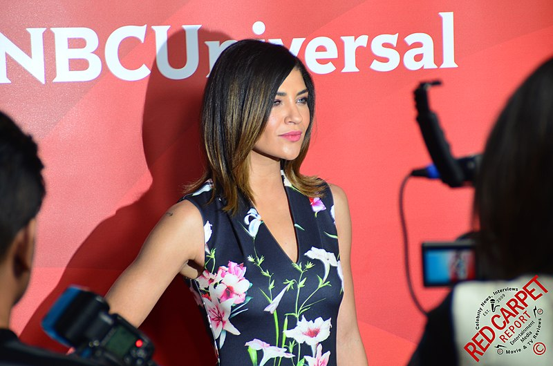 Archivo:Jessica Szohr at 2015 TCA.jpg