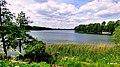 Jezioro w Sępólnie Krajeńskim. Jego powierzchnia wynosi -175,50 ha - panoramio.jpg