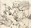 Johann Bayer - Uraniometria - Southern Birds.jpg