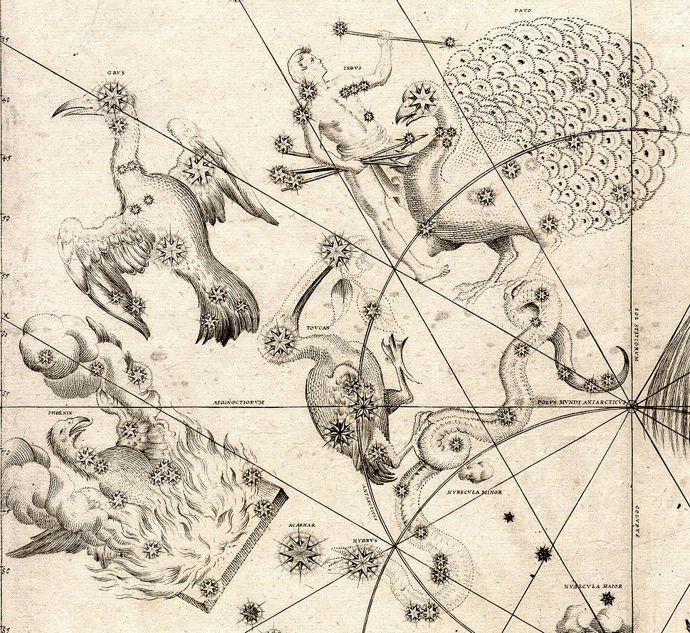 Johann Bayer - Uraniometria - Southern Birds