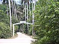 Jozani forest, Zanzibar.jpg