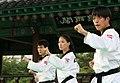 KOCIS Korea Taekwondo Namsan 15 (7628123862).jpg