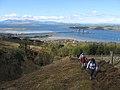 Kaim Hill 2 ascent beside Fairlie Glen.jpg