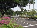 Kampong Java Road 2, Aug 06.JPG
