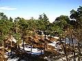 Kapas - panoramio (1).jpg
