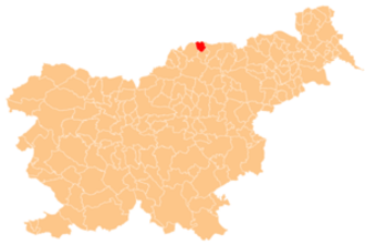 Municipality of Muta - Location of the Municipality of Muta in Slovenia