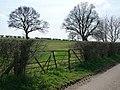 Kentsborough - Field Entrance - geograph.org.uk - 1801109.jpg