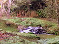 Kerikeri Stream waterfall beside Ruakiwi Rd.JPG