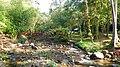 Khao Sok, 2014 December - panoramio (25).jpg