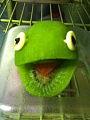 Kiwi Frog.jpg