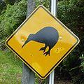 Kiwi sign.jpg