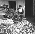 Koše dela, Robidišče 1951.jpg