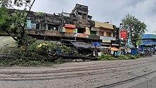 Un arbre abattu le long d'une rue de Kolkata