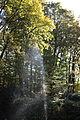 Kollenbergpark as-eos-15m-rgb-2014-10-18-3273 (15383851398).jpg