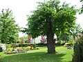 Koloděje, zahrada u sochy svatého Floriána.jpg