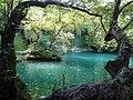 Kurşunlu Şelalesi Tabiat Parkı.jpg