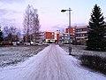 Kyösti Kallion puisto Oulu 20181129 01.jpg