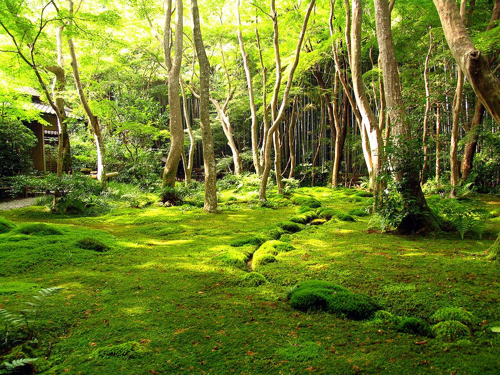 Kyotogarden