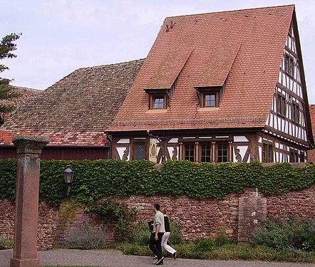 Ladenburg Zentrum 1.jpg