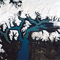 Lago Argentina from space.jpg